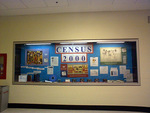 Census 2000 University of Minnesota